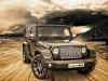 sahara-vilner-jeep-wrangler-jpg